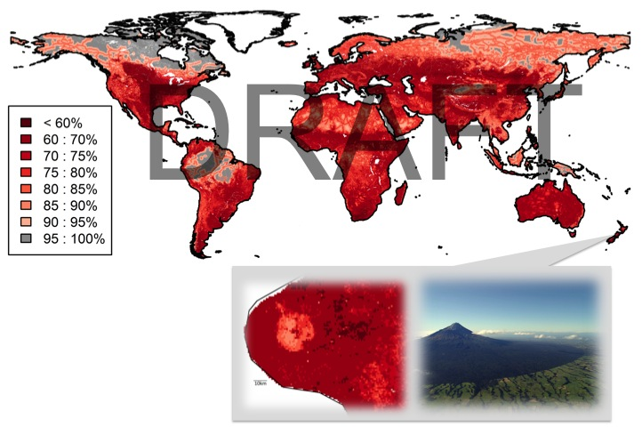 Preliminary global map of LBII for species richness from Newbold *et al*. in prep.